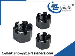 different standard castle nut from China munufacturer