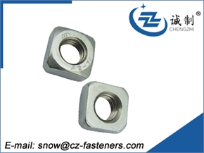 Q195 square nut OEM with lower price